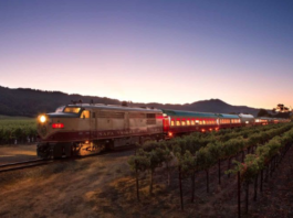 napa-wine-train-daily-ovation