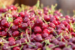 northwest-cherry
